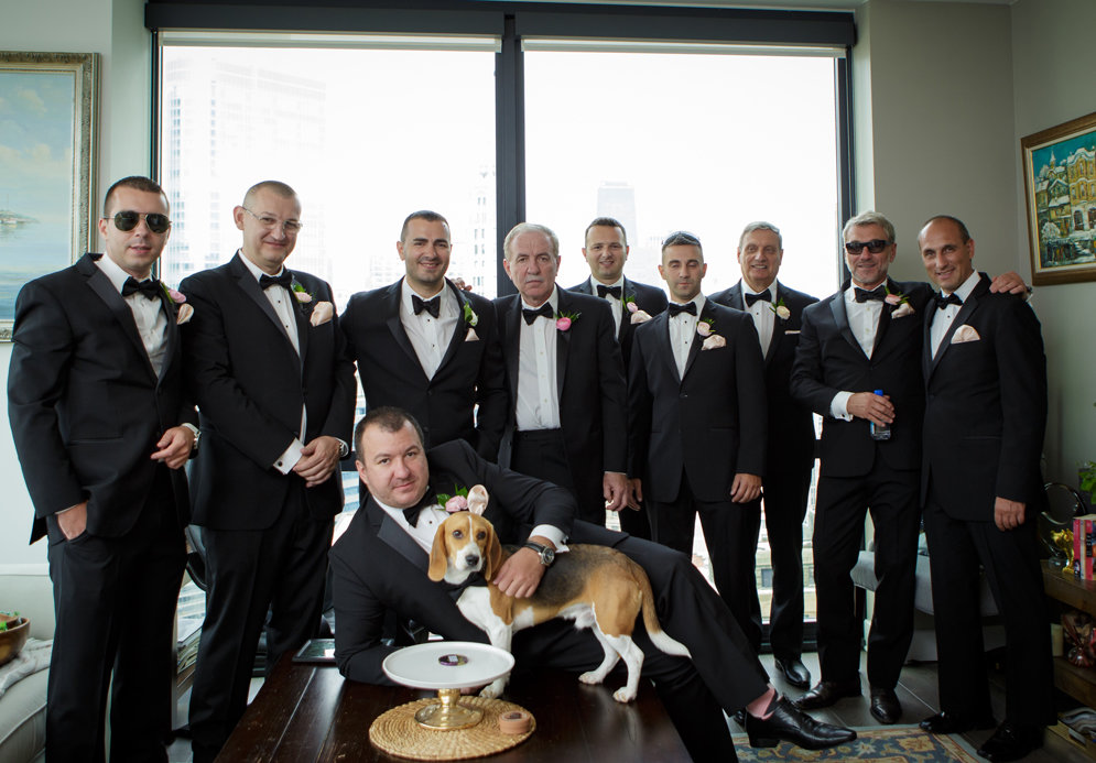Groomsmen Photos | Beagle Puppy | Chicago Wedding | Cafe Brauer Wedding | Bubbly Moments