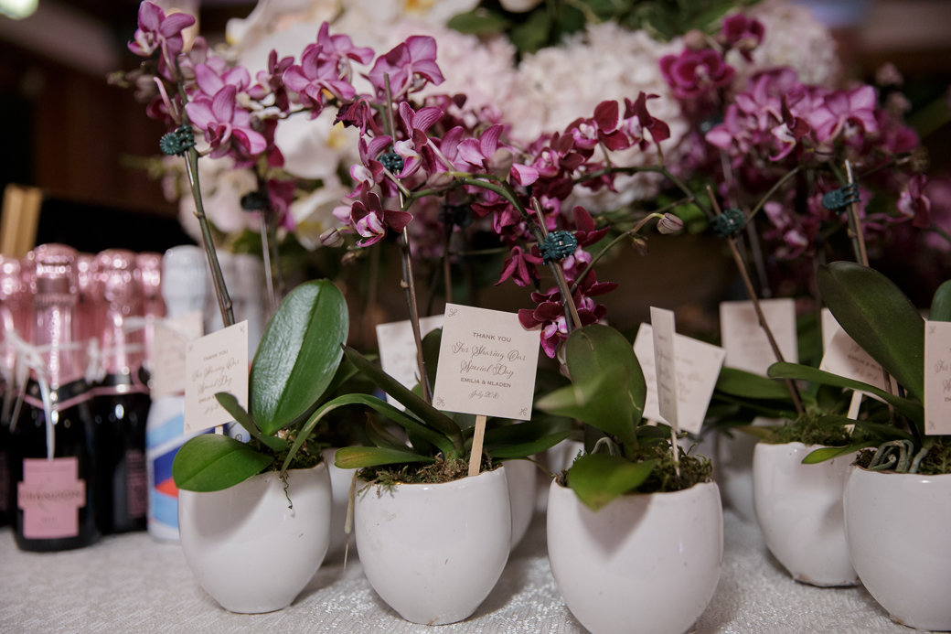 Mini Orchids Wedding Favors | Cafe Brauer | Chicago Wedding | Bubbly Moments