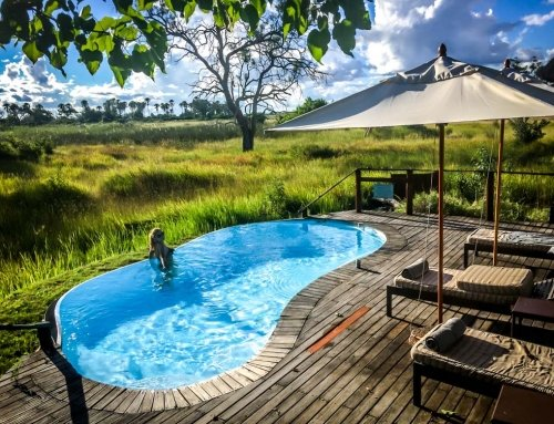 Botswana Okavango Delta Safari and Sanctuary Baines Camp