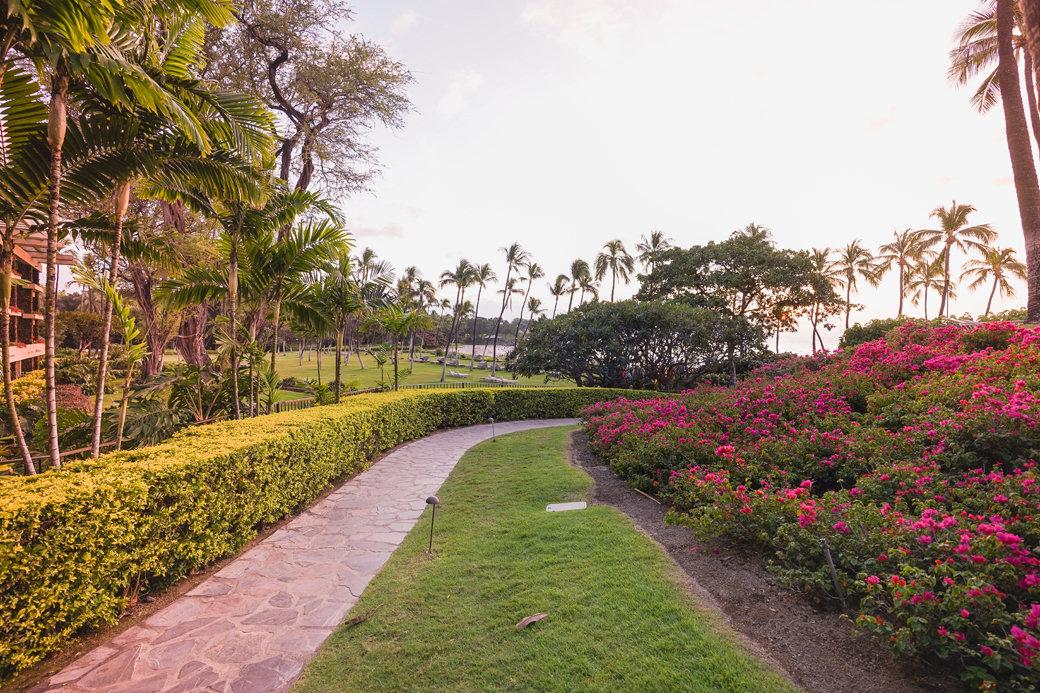 What To Do Around Mauna Kea Beach Hotel On Hawaii S Big Island
