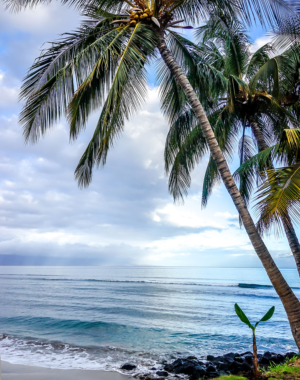 Best Time to Visit Maui, Things to Discover in Maui, What to Eat in Maui, Places to visit in Maui   Travel Guide   Hawaii   Bubbly Moments
